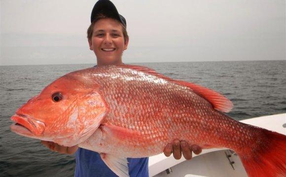 Georgia fishing license