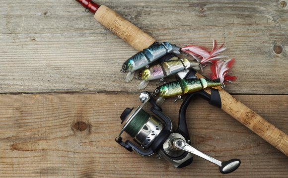 Rods and Reels for Any Kind of