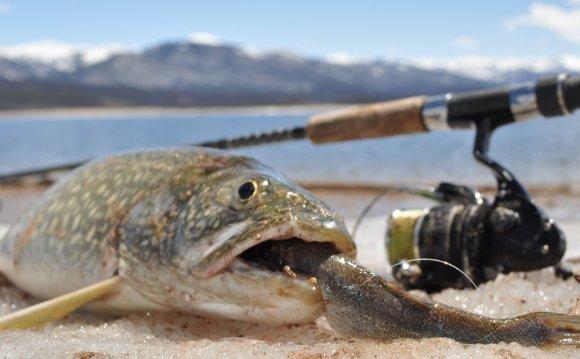 Springtime Fun: Bait Fishing