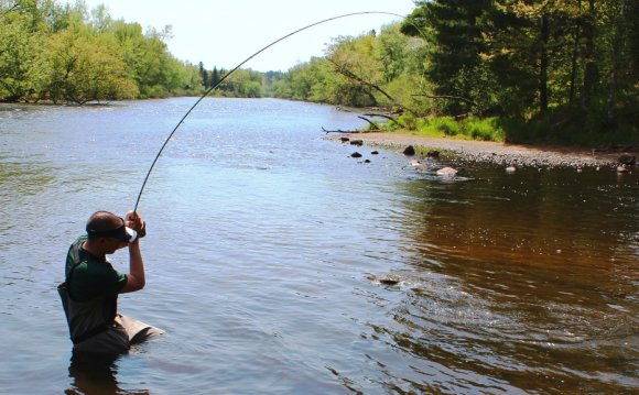Fly Fishing Wisconsin