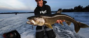 Ice fishing electronics assist anglers get a hold of huge seafood such as this Lake trout. Photo by Chip Leer.