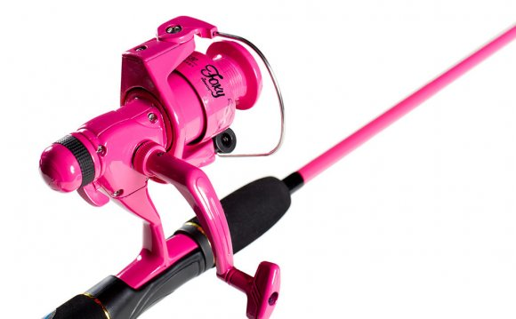 Pink Fishing Pole