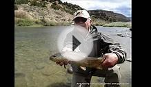 Fly Fishing Report San Juan River nymph dry fly fishing