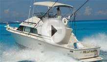 Join this fishing charter on Friday, February 5 in Cancun