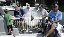 Lake Erie Walleye Fishing Report with Reel Thrill Charters