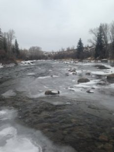 want to understand what the fishing is a lot like within the Colorado large nation? Browse these existing, up to date fishing reports from Silverthorne Colorado's most readily useful fly shop